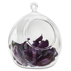 Glass Globe Wedding Decoration or Favor