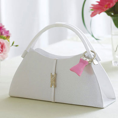 Vertical Band with Crystal Detail Bridal Accessory Evening Bag